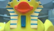 Egyptian duck or ducking the Egyptian question? British Museum shop; photograph by Angela Sutton-Vane 2015